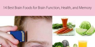 Super Foods That May Help to Improve Your Memory