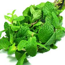 Peppermint Super Foods for Improving Digestion