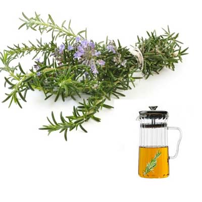 Rosemary Essential Oils That Help Hair Growth Fast
