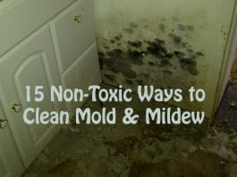 Home Remedies to Get Rid of Mold and Mildew