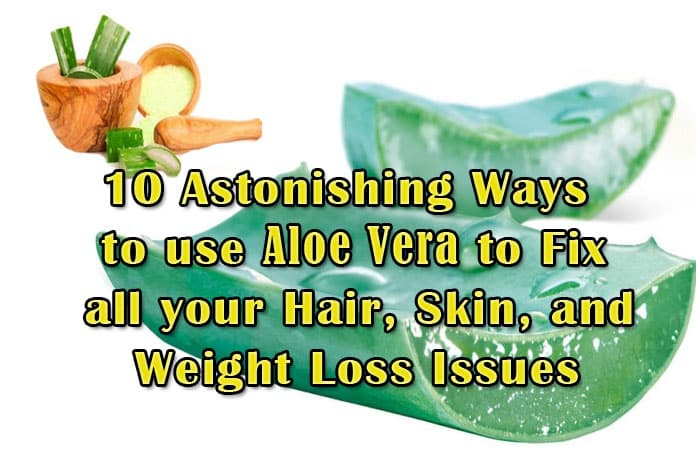 10 Astonishing Ways To Use Aloe Vera To Fix All Your Hair