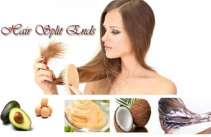 10 Natural Home Remedies to Get Rid of Split Ends