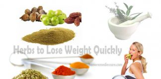 Best Herbs to Lose Weight Quickly – You Must Know