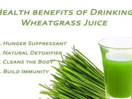 11 Potent Health benefits of Wheatgrass Juice