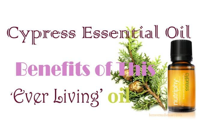 Cypress Essential Oil As A Home Remedy For Health and Other Benefits